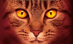 Los gatos guerreros: La nueva profecía VI